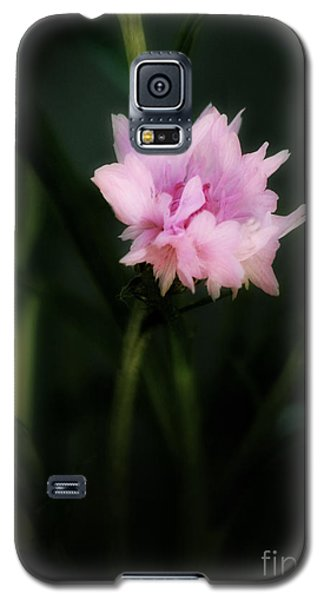Galaxy S5 Case featuring the photograph Pink Cornflower by Marjorie Imbeau
