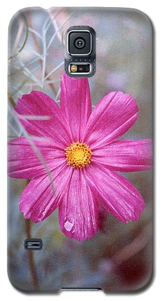 Pink Cosmos Galaxy S5 Case