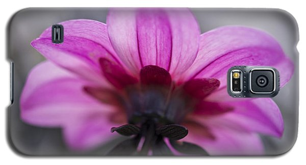Galaxy S5 Case featuring the photograph Pink Dahlia by Priya Ghose