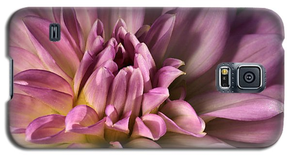 Pink Dahlia's Dream Galaxy S5 Case