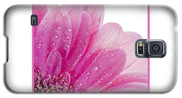 Pink Daisy Petals Galaxy S5 Case