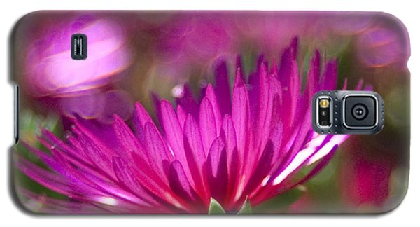 Pink Dance Galaxy S5 Case