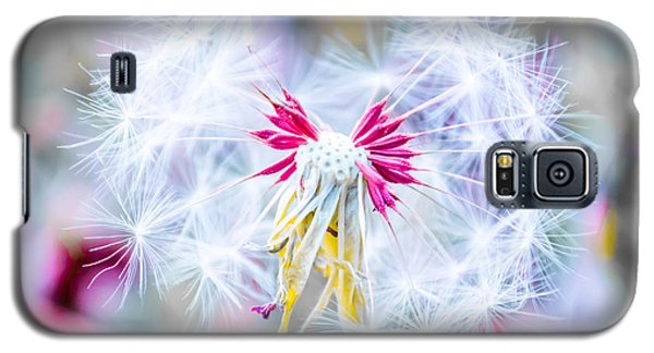 Magic In Pink Galaxy S5 Case by Parker Cunningham