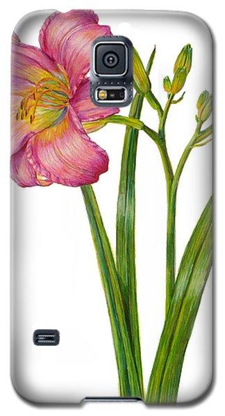 Pink Daylily - Hemerocallis Galaxy S5 Case
