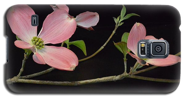 Galaxy S5 Case featuring the photograph Pink Dogwood Branch  by Jeannie Rhode