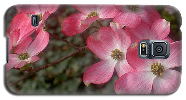 Pink Dogwood Delight Galaxy S5 Case