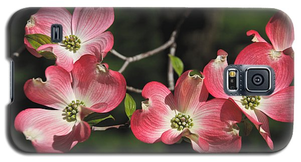 Pink Dogwood Galaxy S5 Case