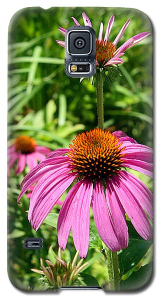 Galaxy S5 Case featuring the photograph Pink Echinacea by Ellen Tully