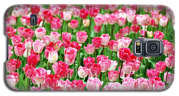 Galaxy S5 Case featuring the photograph Pink Field by Kjirsten Collier