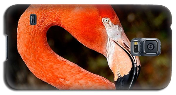 Not So Pink Flamingo Galaxy S5 Case