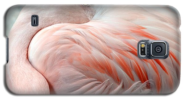 Galaxy S5 Case featuring the photograph Pink Flamingo II by Robert Meanor