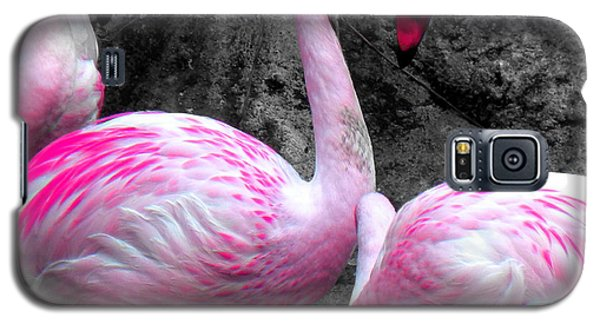 Galaxy S5 Case featuring the photograph Pink Flamingos by J Anthony