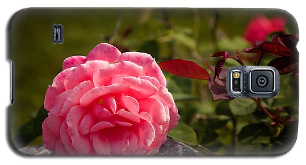Pink Floral Galaxy S5 Case