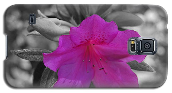 Galaxy S5 Case featuring the photograph Pink Flower 2 by Maggy Marsh