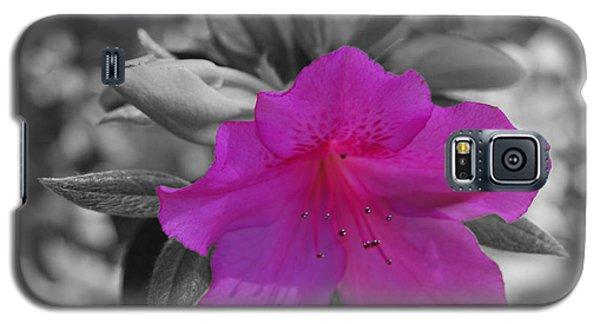 Pink Flower 2 Galaxy S5 Case