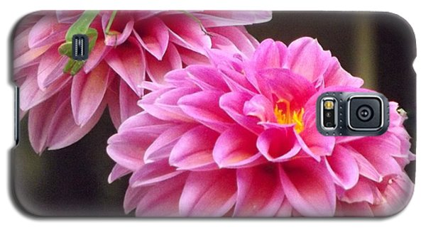 Pink Flower Galaxy S5 Case by John Wartman