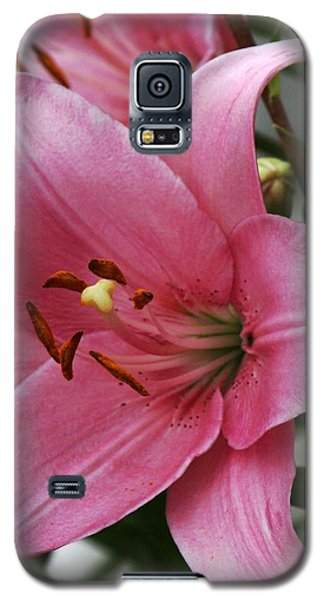 Pink Flower  Left Facing Galaxy S5 Case by Bill Woodstock