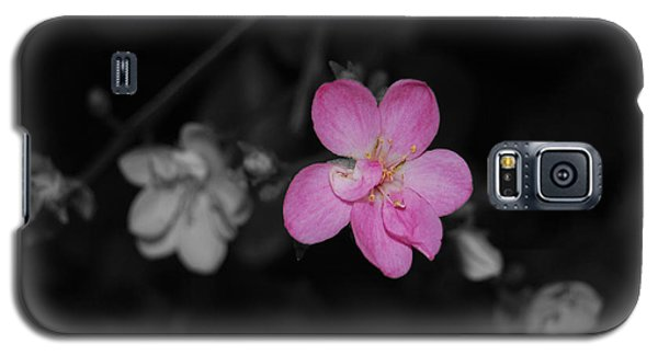 Galaxy S5 Case featuring the photograph Pink Flower  by Maggy Marsh