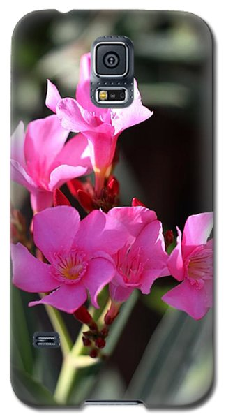 Galaxy S5 Case featuring the photograph Pink Flower  by Ramabhadran Thirupattur