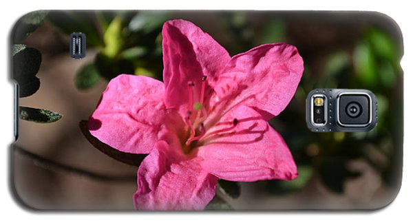 Galaxy S5 Case featuring the photograph Pink Flower by Tara Potts