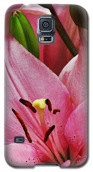Pink Flower Upward Facing Galaxy S5 Case by Bill Woodstock