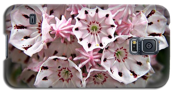 Galaxy S5 Case featuring the photograph Pink Flowered Mountain Laurel by William Tanneberger
