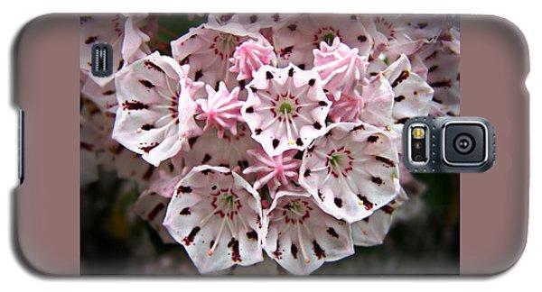 Pink Flowered Mountain Laurel Galaxy S5 Case