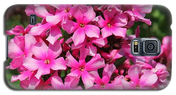 Pink Flowers Galaxy S5 Case by Bill Woodstock