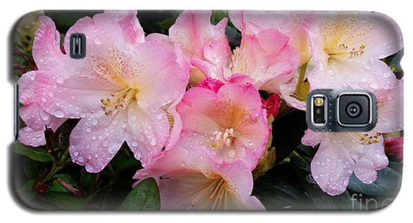 Galaxy S5 Case featuring the photograph Pink Flowers by Rose Wang