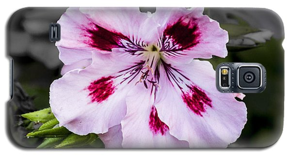 Galaxy S5 Case featuring the digital art Pink Geranium by Photographic Art by Russel Ray Photos