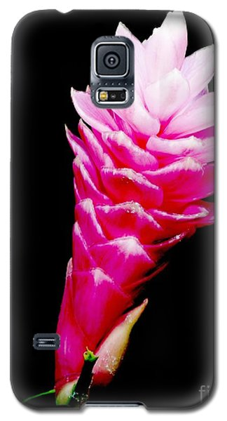 Pink Ginger Lilly Galaxy S5 Case by Amar Sheow
