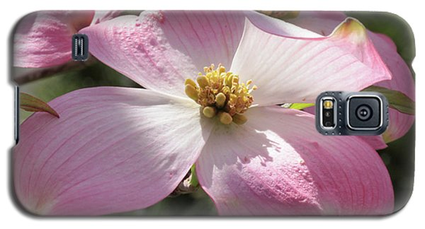 Pink Glory Galaxy S5 Case