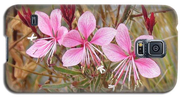 Pink Guara Galaxy S5 Case