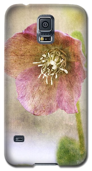Pink Hellebore Galaxy S5 Case by Betty Denise