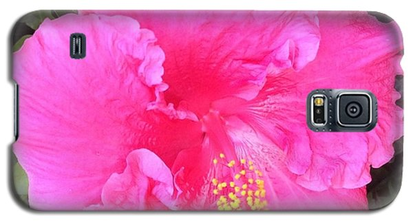 Galaxy S5 Case featuring the photograph Pink Hibiscus by Alohi Fujimoto