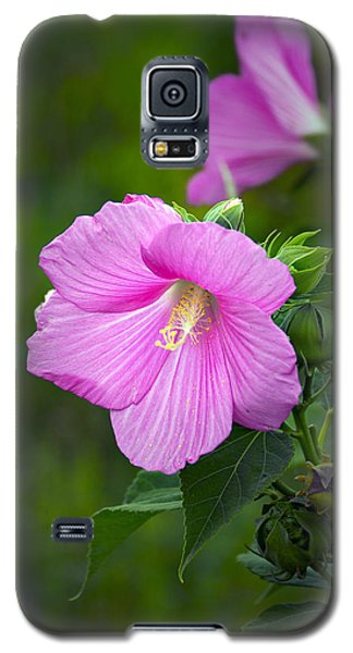 Galaxy S5 Case featuring the photograph Pink Hibiscus by Judy  Johnson