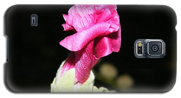 Pink Hollyhock  Galaxy S5 Case