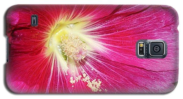 Pink Hollyhock Galaxy S5 Case