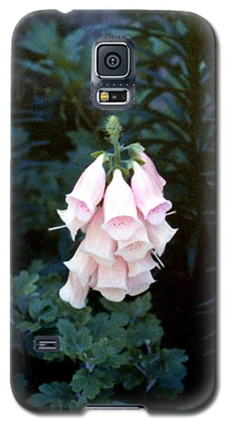 Pink Digitalis Galaxy S5 Case