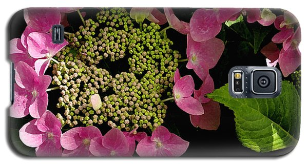 Galaxy S5 Case featuring the photograph Pink Hydrangea by James C Thomas