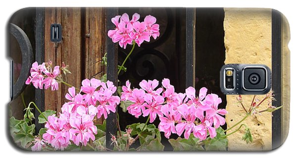 Galaxy S5 Case featuring the photograph Pink In My Window by Lew Davis