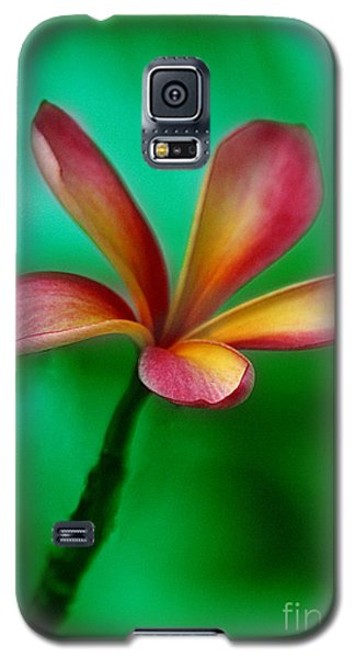 Pink Jasmin Galaxy S5 Case