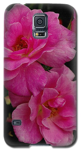 Galaxy S5 Case featuring the photograph Pink Knock Outs by James C Thomas