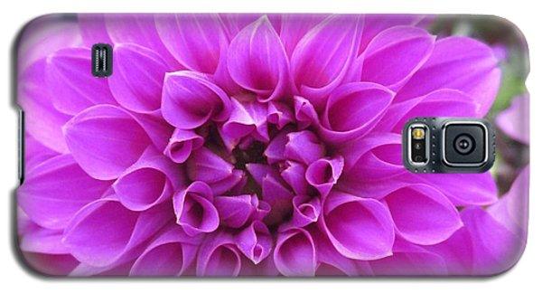 Pink Lady Galaxy S5 Case