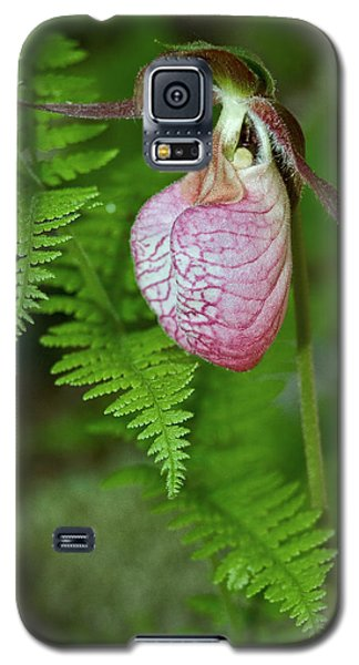 Pink Lady Slipper Galaxy S5 Case