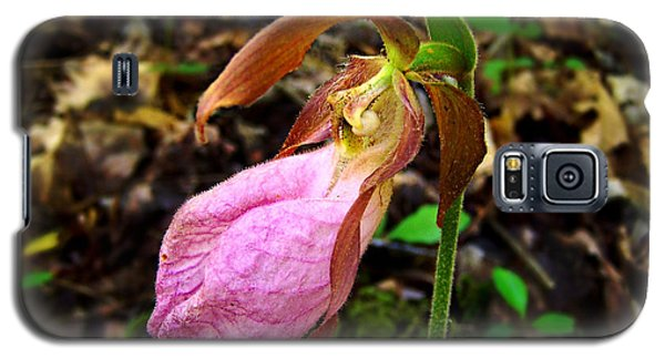 Pink Ladyslipper Orchid Galaxy S5 Case