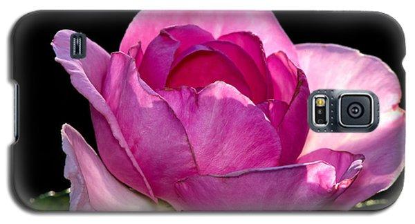 Pink Light Galaxy S5 Case
