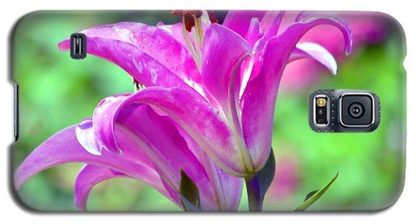 Pink Lilies Galaxy S5 Case by Deena Stoddard