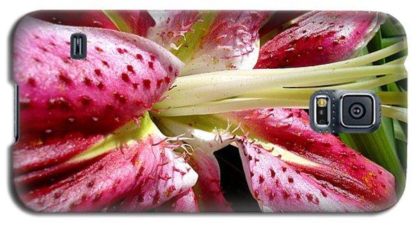 Pink Lily Macro Galaxy S5 Case