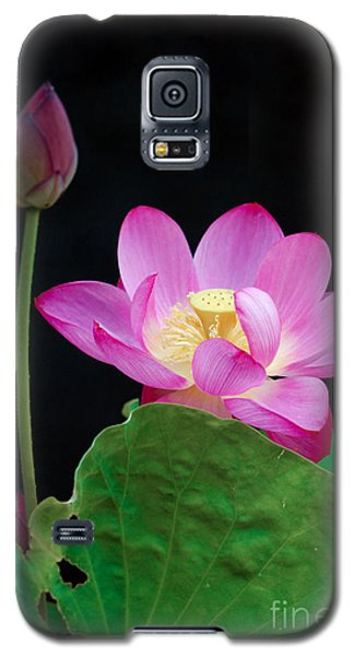 Galaxy S5 Case featuring the photograph Pink Lotus Flowers by Eva Kaufman